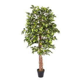 Artificial Green Ficus Tree Replica Plant- 6 Feet