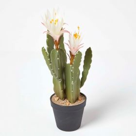 Artificial Cactus Queen Of The Night Flower In Black Pot, 41 cm Tall