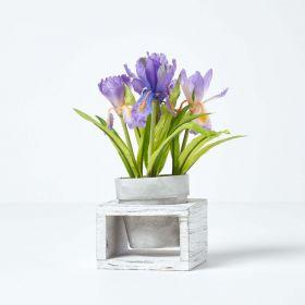 Small Purple Artificial Iris in White Wooden Pot, 24 cm